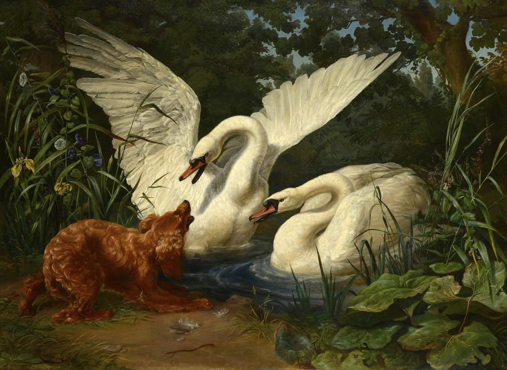 FERDINAND SIGMUND LACHENWITZ (1820-1868) TWO SWANS STARTLED BY A HOUND signed and dated 1846 Image